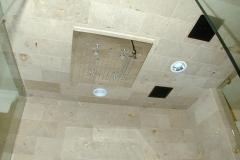 Shwr-Ceiling-0403